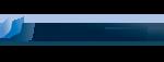 plassan logo client